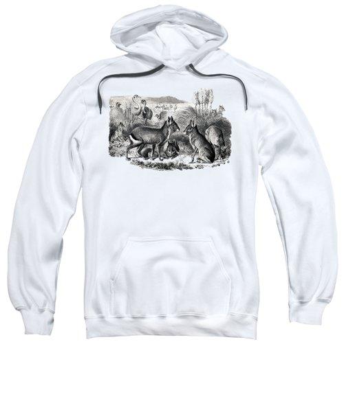 woodcut drawing of South American Maras Sweatshirt