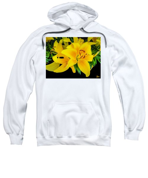 Yellow Tiger Lily In The Spring Sweatshirt