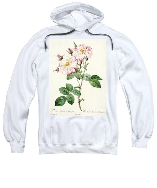 York And Lancaster Rose Sweatshirt