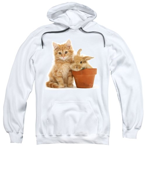 You're Potty Sweatshirt