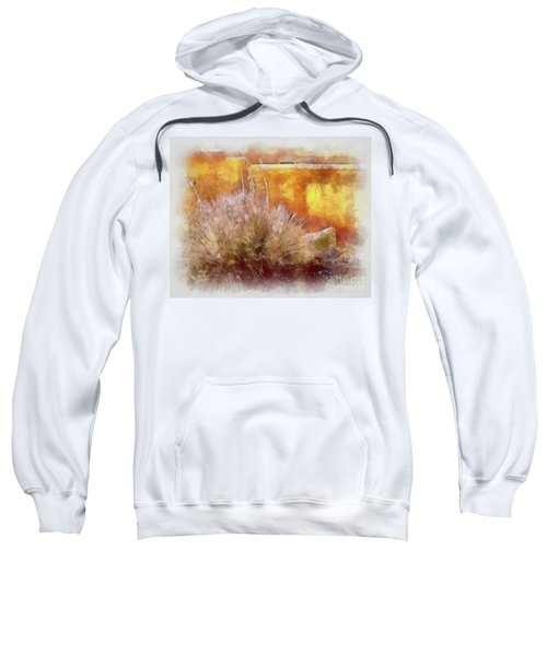 Yucca And Adobe In Aquarelle Sweatshirt