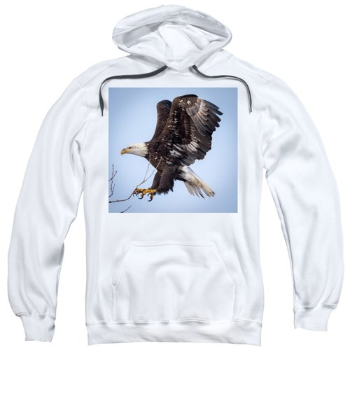 Eagle Coming In For A Landing Sweatshirt