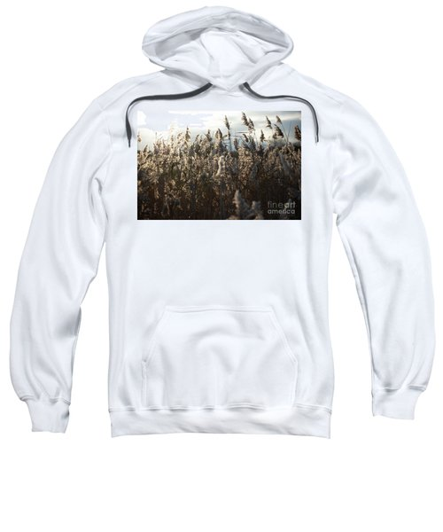 Fine Art Nature Sweatshirt