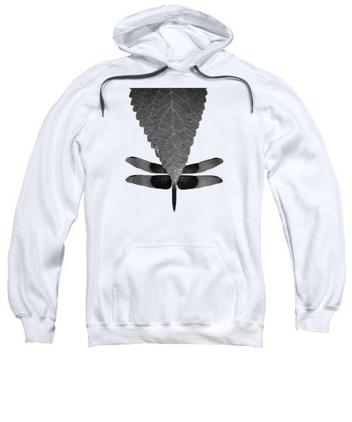 Hiding Dragons Sweatshirt