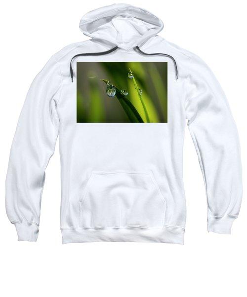 Rain Drops On Grass Sweatshirt