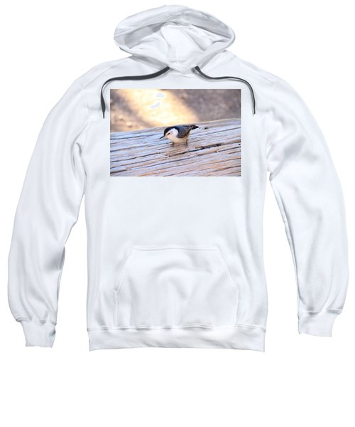 White Breasted Nuthatch Sweatshirt