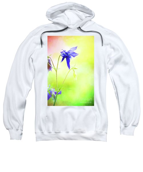 Painted Purple Columbine 2 Sweatshirt