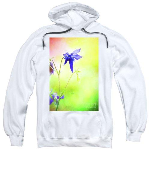 Painted Purple Columbine 2 Sweatshirt