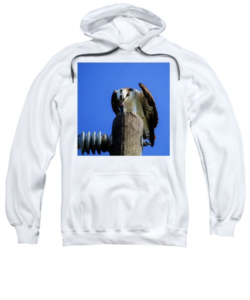 A Tasty Lunch Sweatshirt