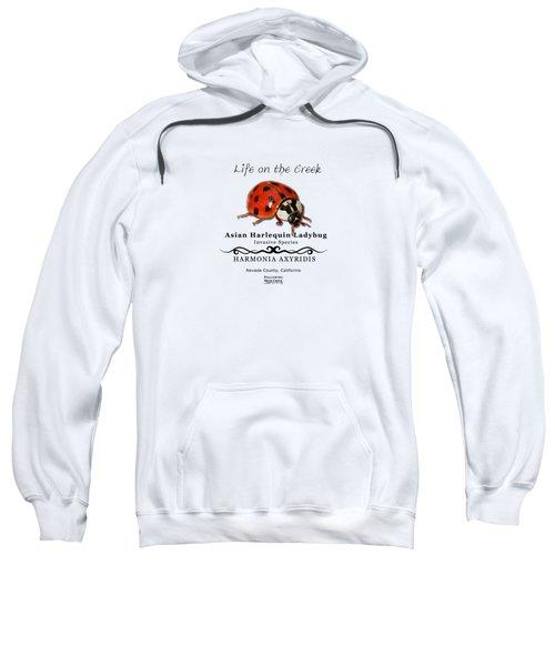 Asian Harlequin Ladybug Sweatshirt