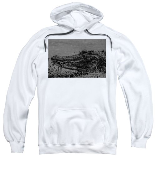 B And W Gator Sweatshirt