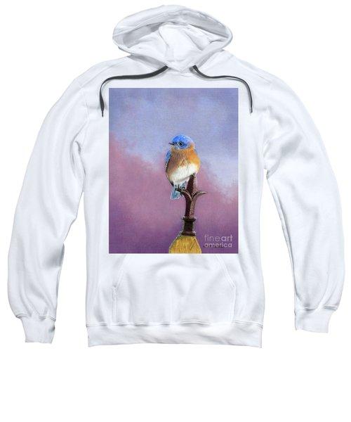 Backyard Bluebird Sweatshirt