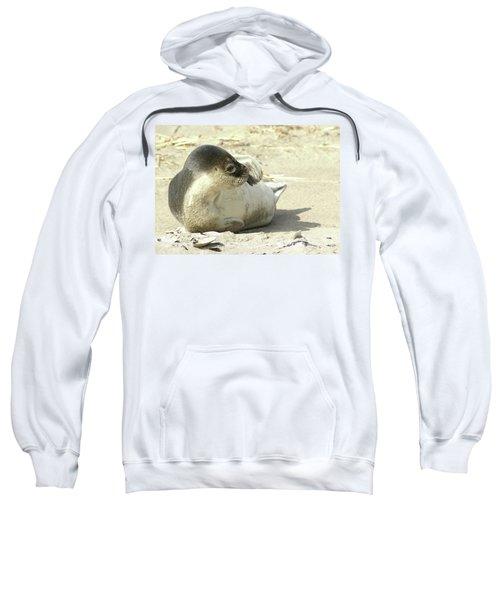 Beach Seal Sweatshirt