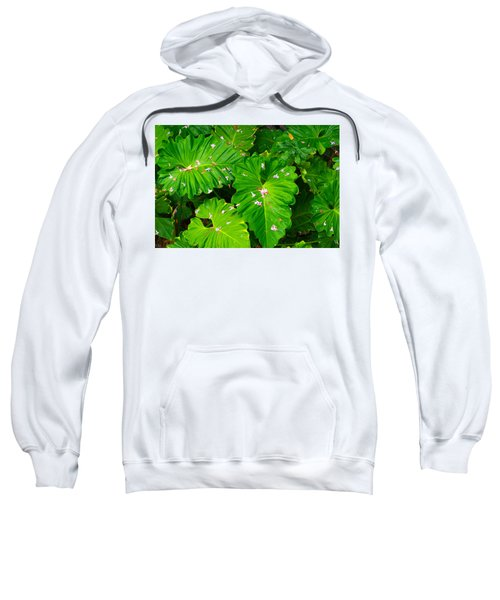 Big Green Leaves Sweatshirt