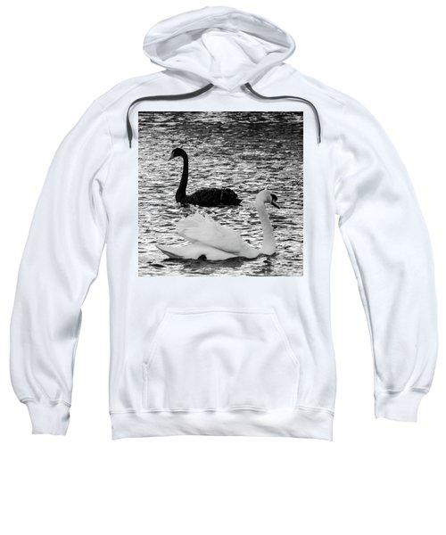 Black And White Swans Sweatshirt