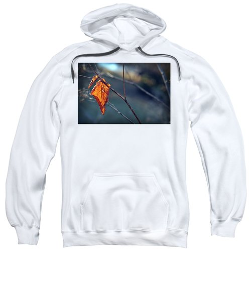 Captured In Light Sweatshirt