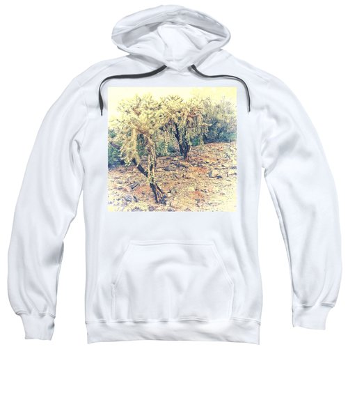 Chain Fruit Cholla Sweatshirt
