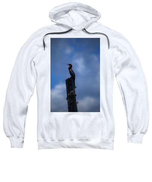 Cinematic Looking Anhinga Sweatshirt