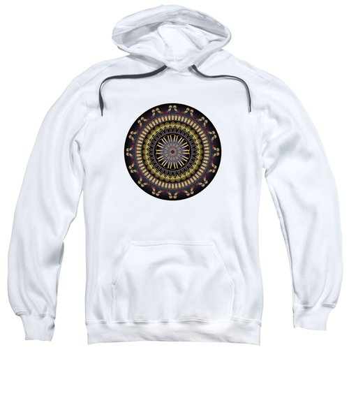Circumplexical No 3620 Sweatshirt