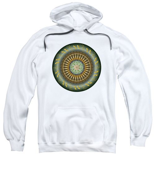 Circumplexical No 3675 Sweatshirt