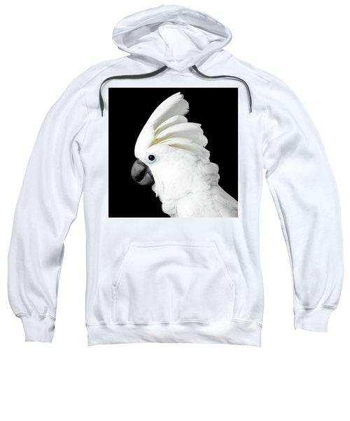 Cockatoo Alba Sweatshirt