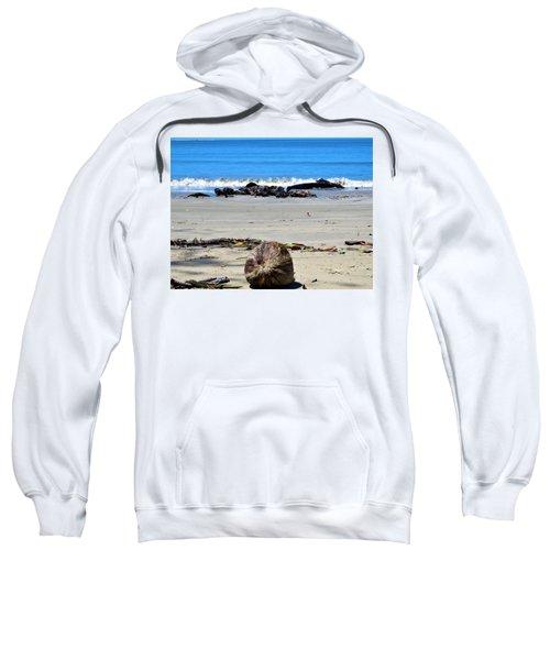 Coconut Beach Sweatshirt