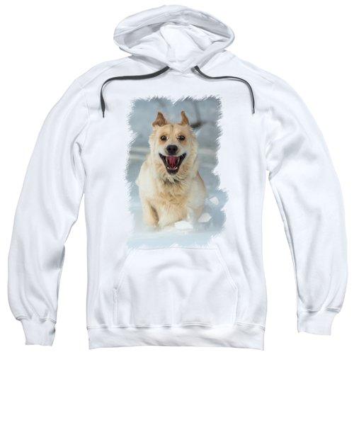 Crazy Dog Transparancy Sweatshirt