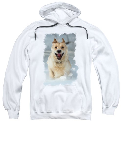 Crazy Dog Transparancy Sweatshirt