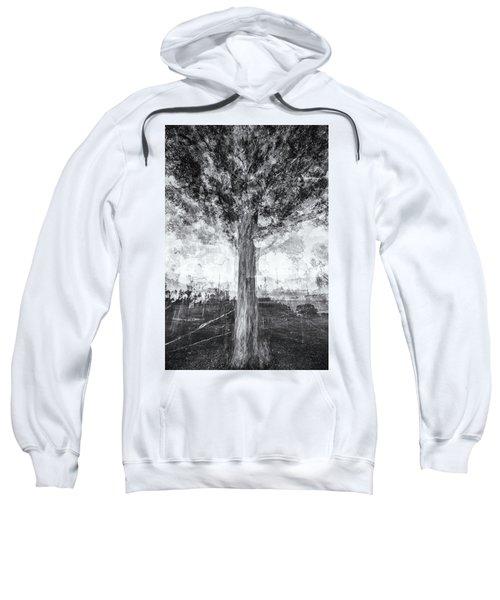 D1651p Sweatshirt