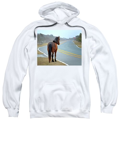 Delegats's Pride Looking For Visitors To Assateague Island Sweatshirt