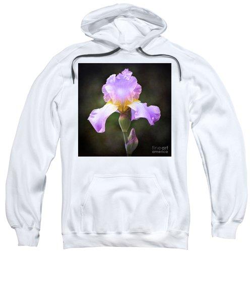 Dramatic Purple Iris Sweatshirt