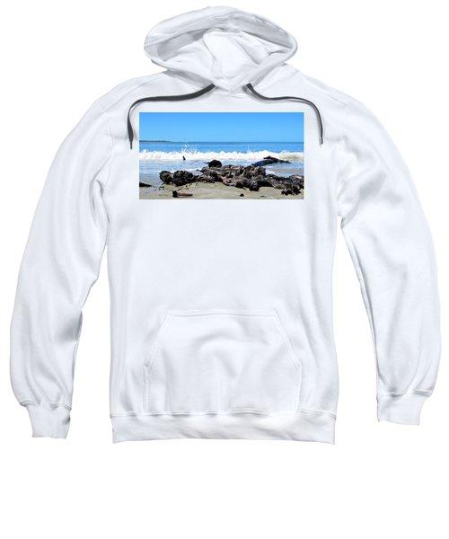 Drift Wood And Sea Sweatshirt