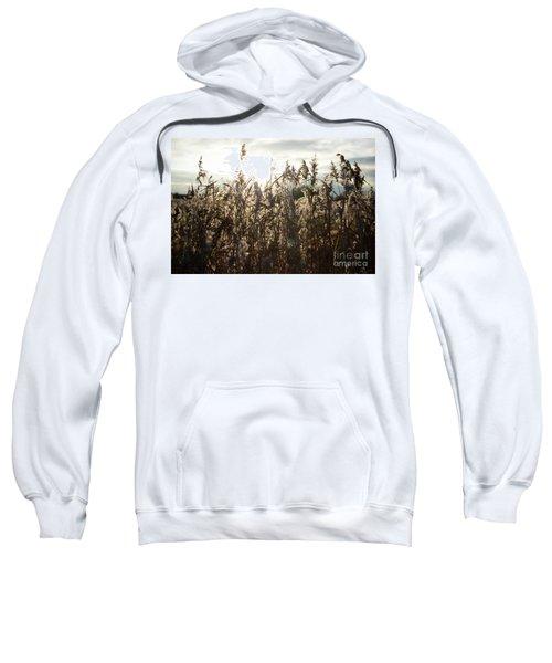 Dusk  Sweatshirt