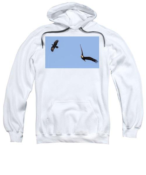 Eagle And Crow  Sweatshirt