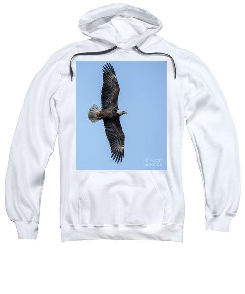 Evening Catch Sweatshirt