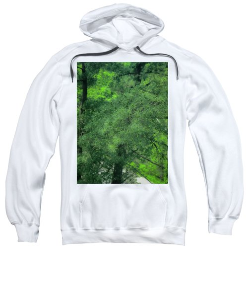 Ever Green Sweatshirt