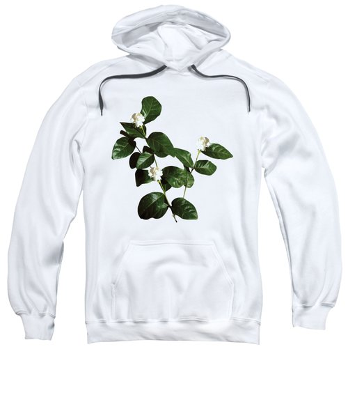 Floral Bud White Flora Withwhite Flora With Dark Leaves Sweatshirt