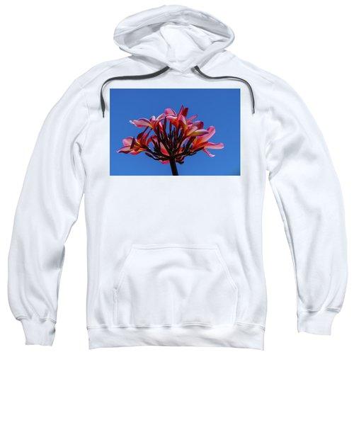 Flowers In Clear Blue Sky Sweatshirt