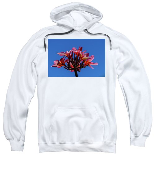 Flowers In Clear Blue Sky Sweatshirt