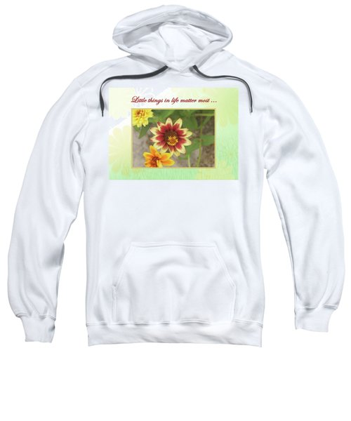 Friendship, A Smiling Indian Blanket Flower  Sweatshirt