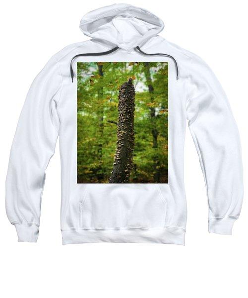 Fungus Among Us Sweatshirt