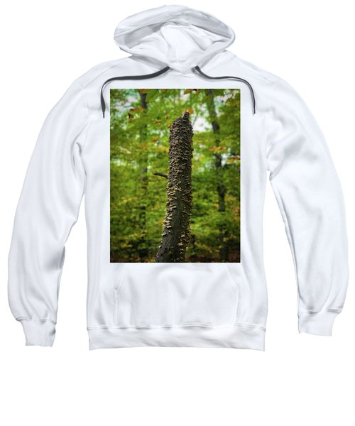 Fungus Among Us Sweatshirt