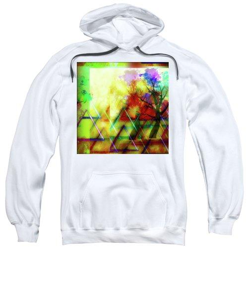 Geometric Abstract Sweatshirt