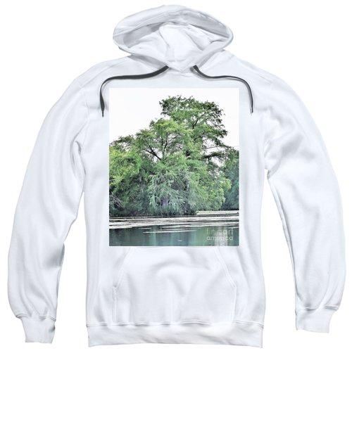 Giant River Tree Sweatshirt