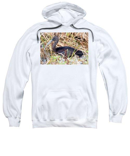 Glossy Ibis 123015 Sweatshirt