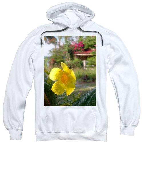 Golden Dew Sweatshirt