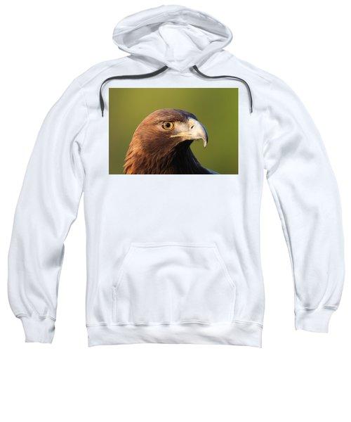 Golden Eagle 5151801 Sweatshirt