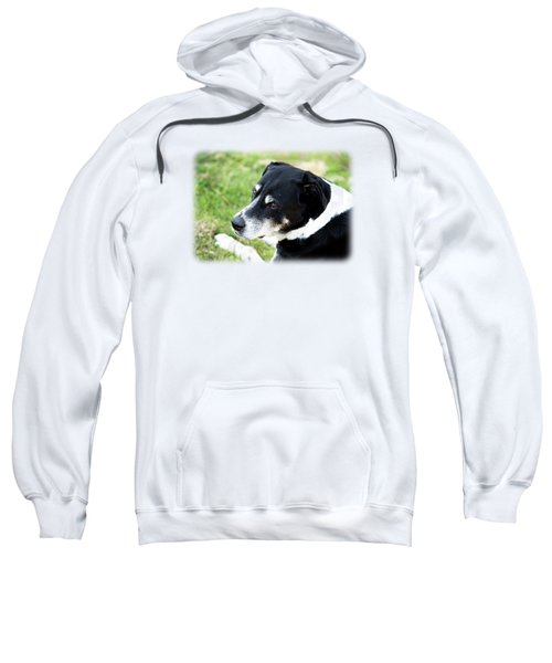 Happy Hound Sweatshirt