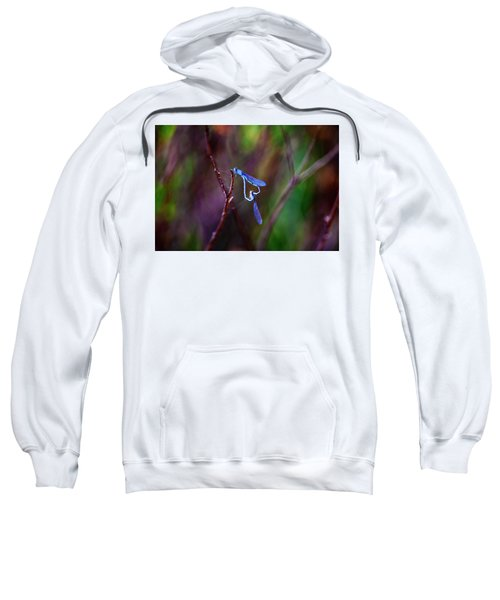Heart Of Dragonfly Sweatshirt