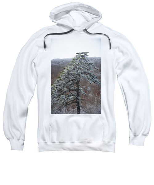 Hoarfrost Gathers Sweatshirt